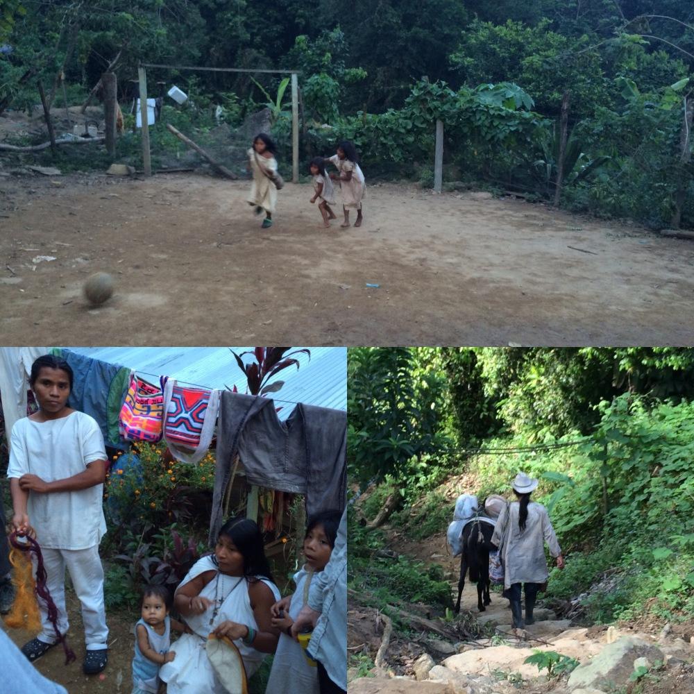 The Lost City - Trekking La Ciudad Perdida in Colombia (2/6)